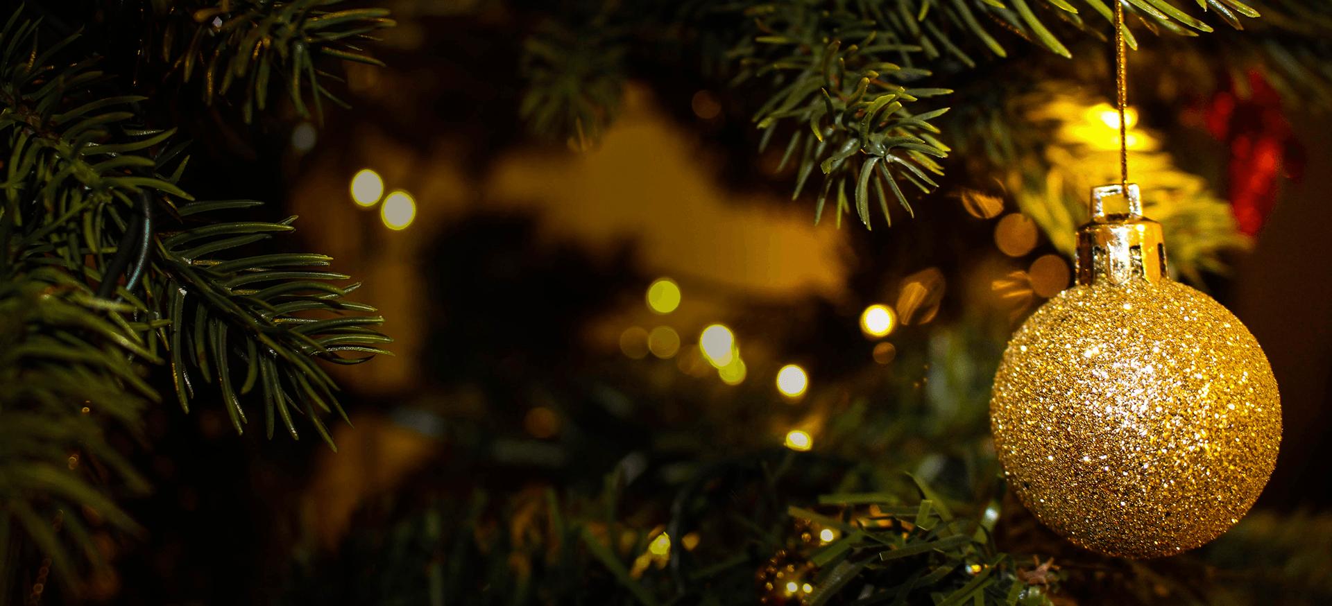 Microbe Christmas